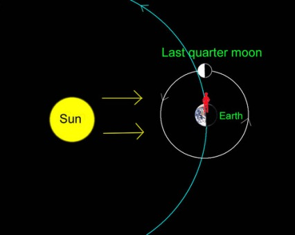 The view from space of the moon, Earth and sun as seen from above (not to scale.) Sunlight illuminates the left half of the moon from our perspective. Our observer (in red) stands on the sunrise line separating day and night on our planet. Illustration: Bob King. from http://astrobob.areavoices.com/2009/03/18/moonshine-sunshine-treeshine/